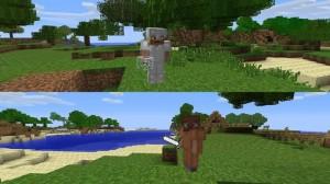 Minecraft 360