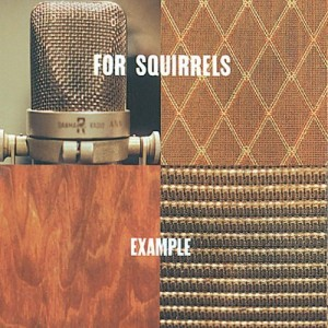 For Squirrels - Example